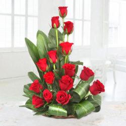 red rose sweet surprises